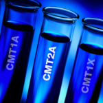 The CMTA Announces the Funding of a New Research Study for CMT2A