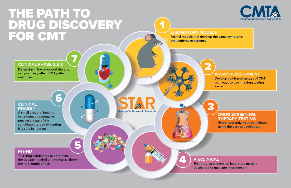 Path to Drug Discovery for CMT