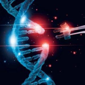 Cutting-Edge Gene Editing