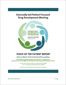 Voice of the Patient Report
