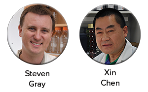 Drs. Gray and Chen